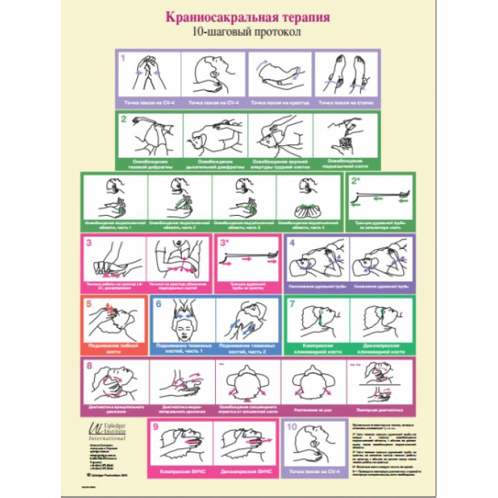 """Плакат """"Десятишаговый протокол краниосакральной терапии по Апледжеру"""""""